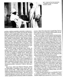 Přehledová literatura o indickém filmu Th_970206629_13_122_245lo