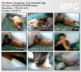 th 24249 Gangbang Cuti Semester 123 500lo Melayu Boleh – Best of 3GP Melayu GangBang